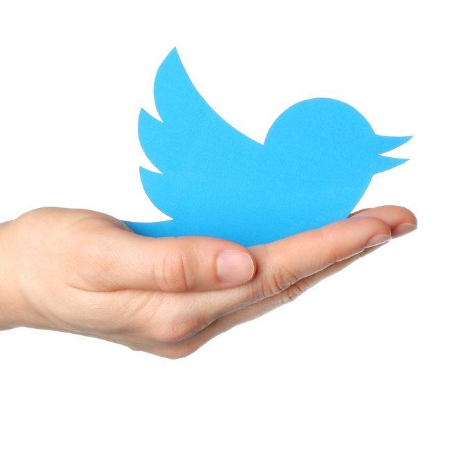 Gestión Twitter