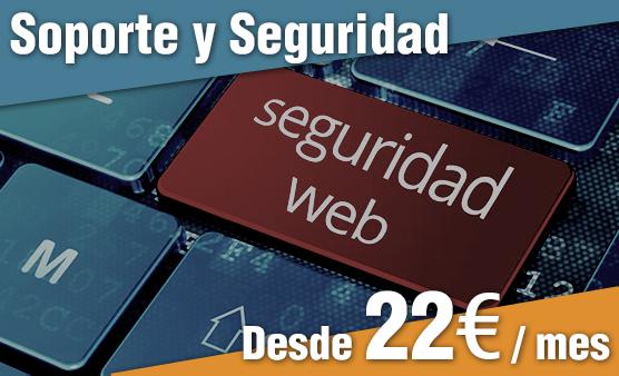 Soporte y Seguridad WEB